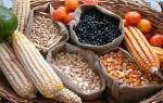 Углеводы в продуктах и их значение для организма