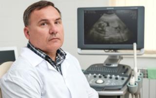 На каком сроке беременности делают первое УЗИ